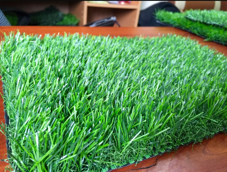 cỏ nhân tạo mầm non